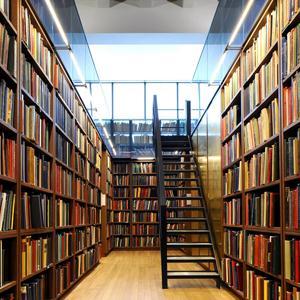 Библиотеки Буинска
